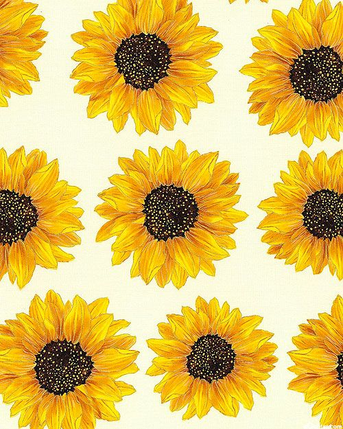 Forever Sunflowers Radiant Helianthus Cream/Gold