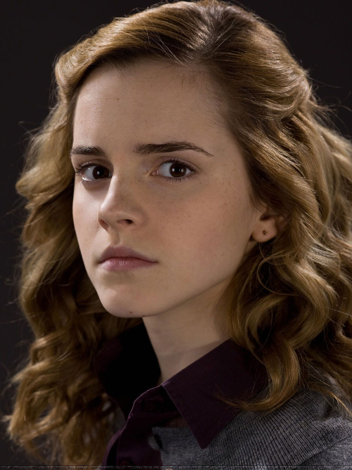 Harry Potter Photo Hermione Granger Harry Potter Hairstyles Emma Watson Harry Potter Hermione Granger Hair