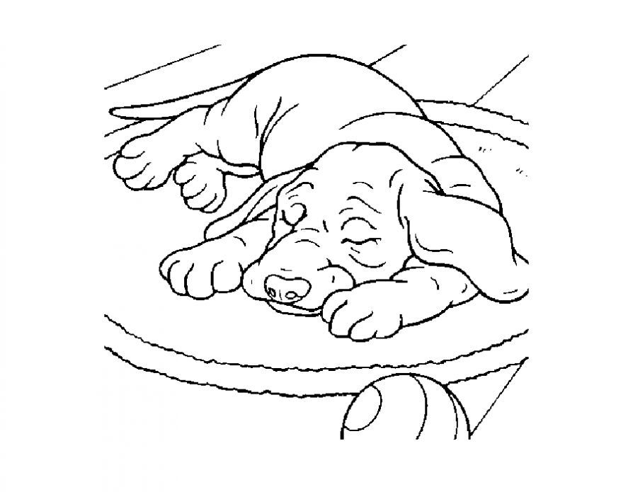 Картинки по запросу собака раскраска | Раскраски, Квилтинг ...