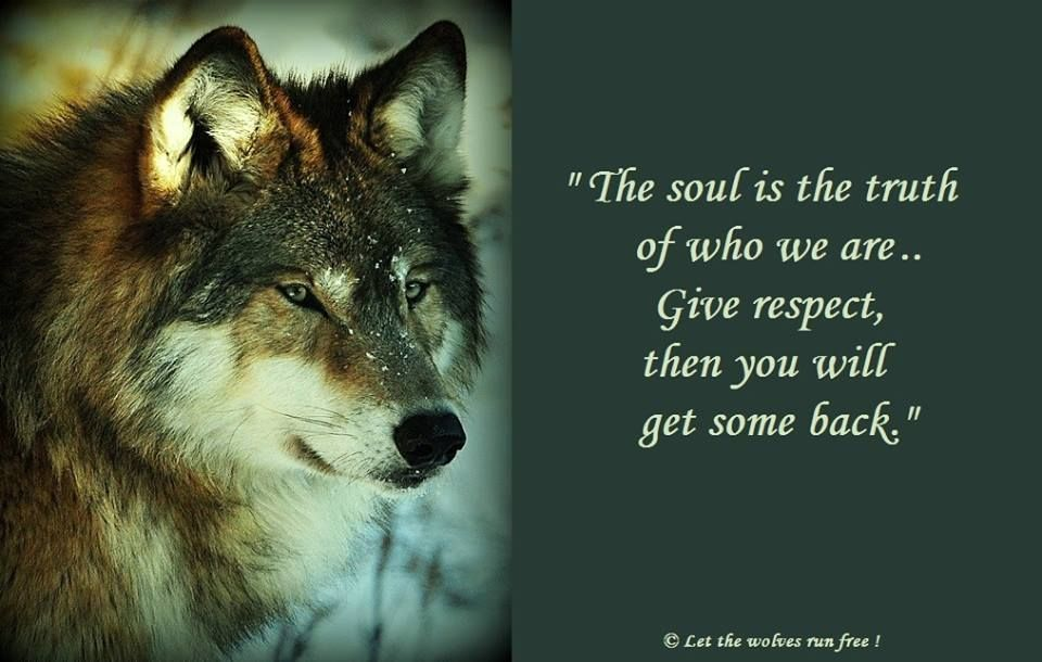 The Soul is the Truth of Who We Are    Give Respect Then You