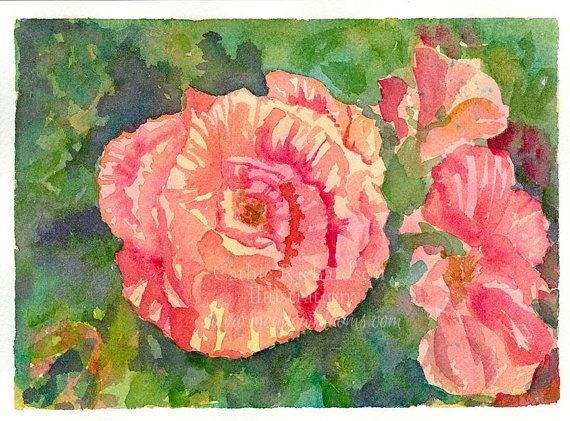 Champagne pink roses watercolor original painting by countrygarden champagne pink roses watercolor original painting by countrygarden mightylinksfo