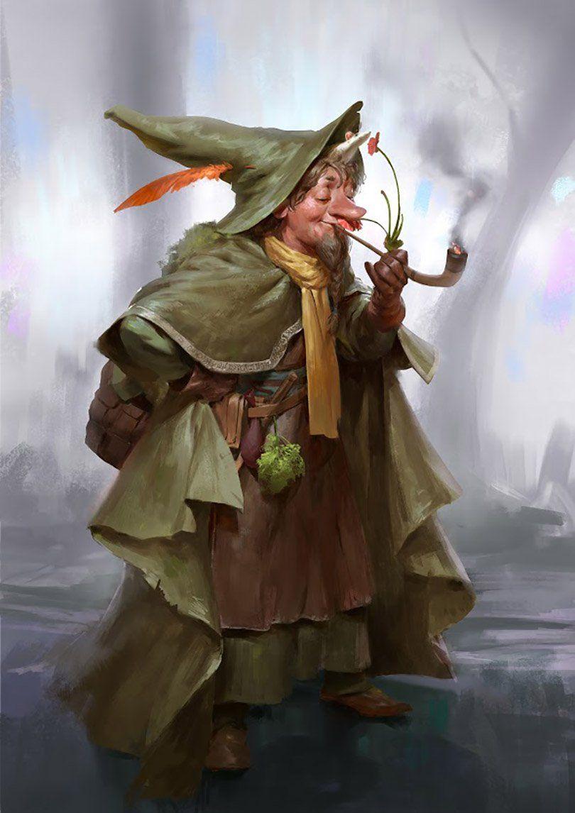 Uma versão nórdica de Harry Potter | Gnome | Pinterest | Gnomes