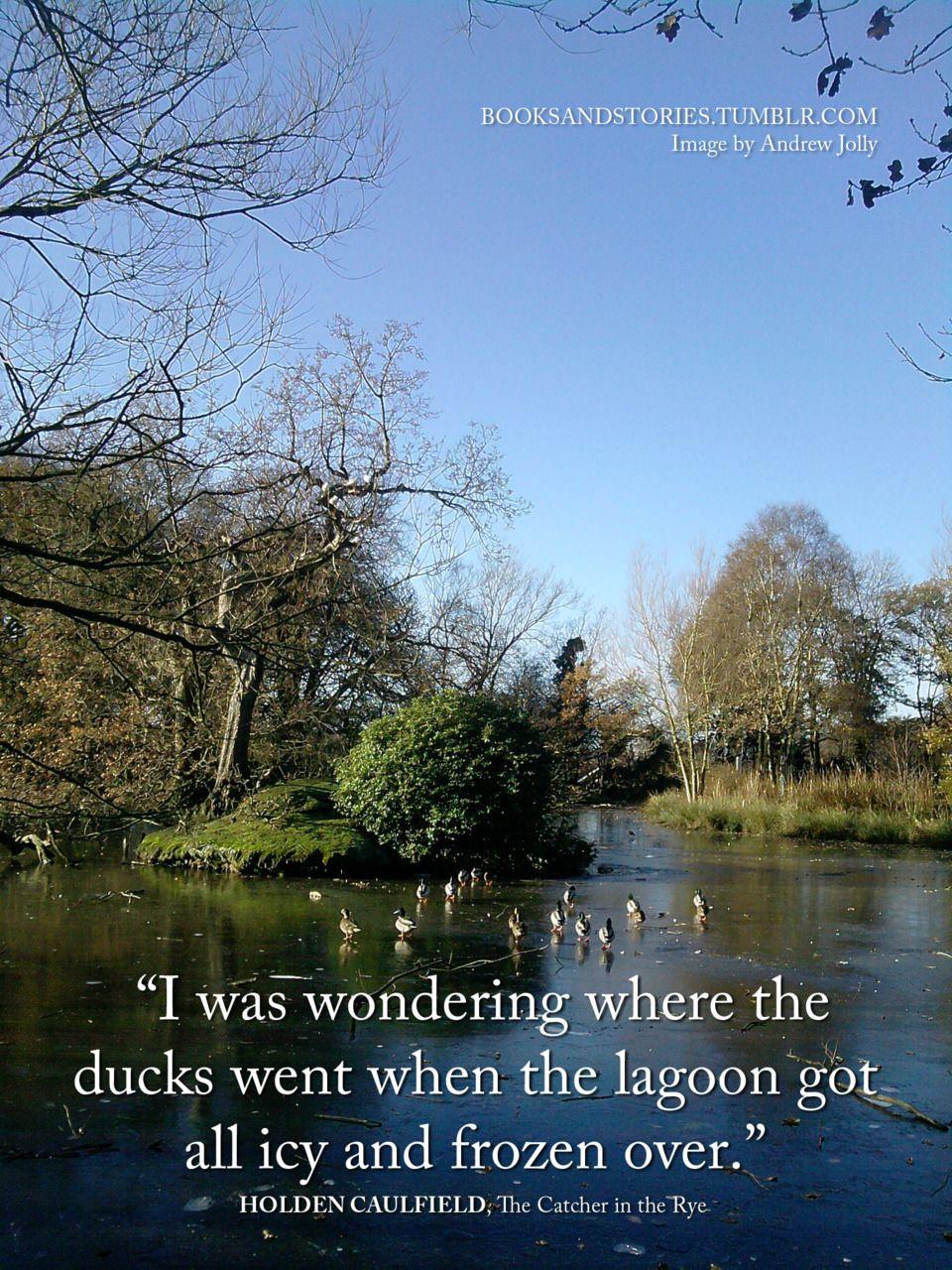 catcher in the rye ducks quote