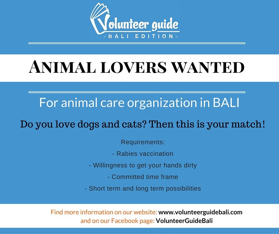 Looking to Volunteer at an animal organisation in Bali, Indonesia? Have a look at our website to find out which organisation is now hiring and which ones we recommend!