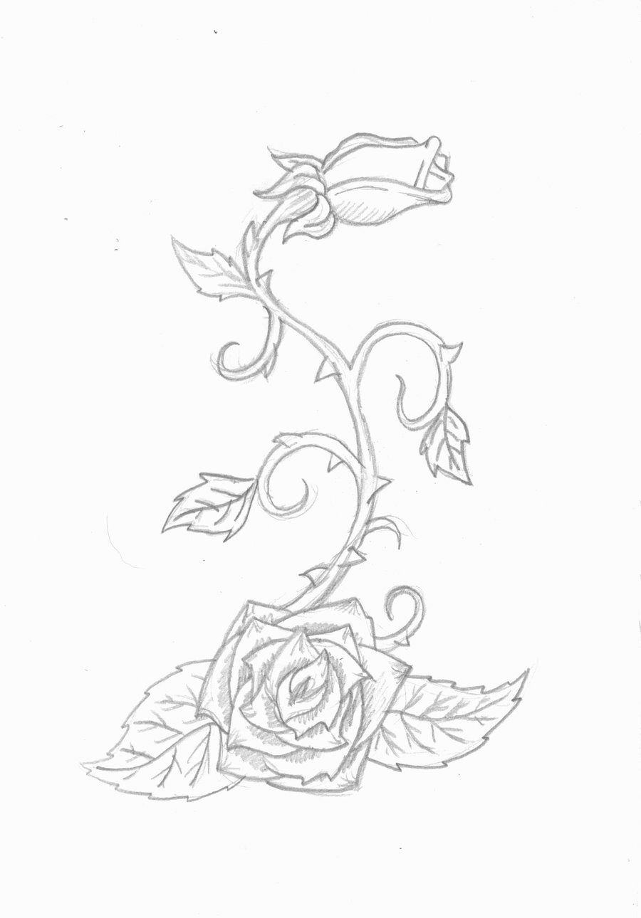 89ebee2ed1 100 Authentic Offer Discounts Rose Vine Tattoo By On
