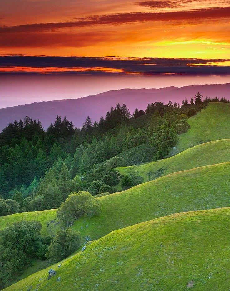 Pin by Raywood on magic world Marin county california