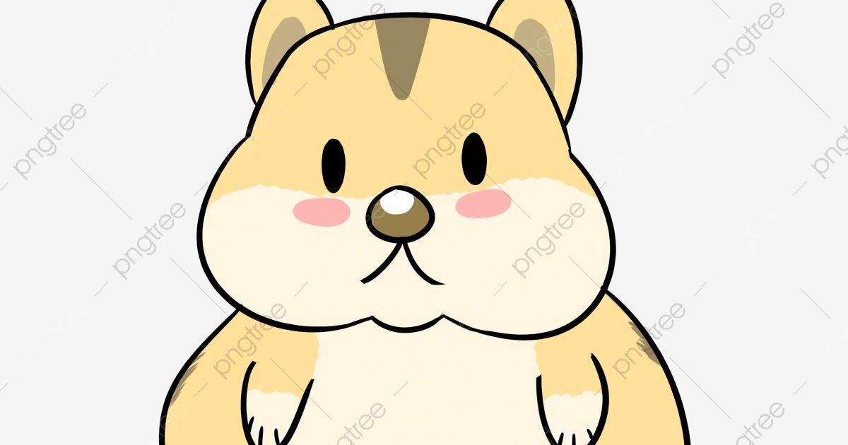 Keren 30 Gambar Kartun Binatang Kartun Hamster Hamster Kartun Haiwan Comel Haiwan Kartun Download Mengenal Macam Macam Burung Hewa Binatang Hamster Kartun