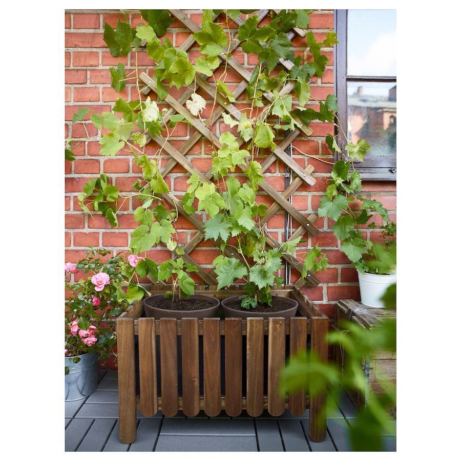 Askholmen Spalier Hellbraun Lasiert Graubraun Lasiert Hellbraun Graubraun Ikea Deutschland In 2020 Outdoor Pflanzen Blumen In Einer Schachtel Spalier
