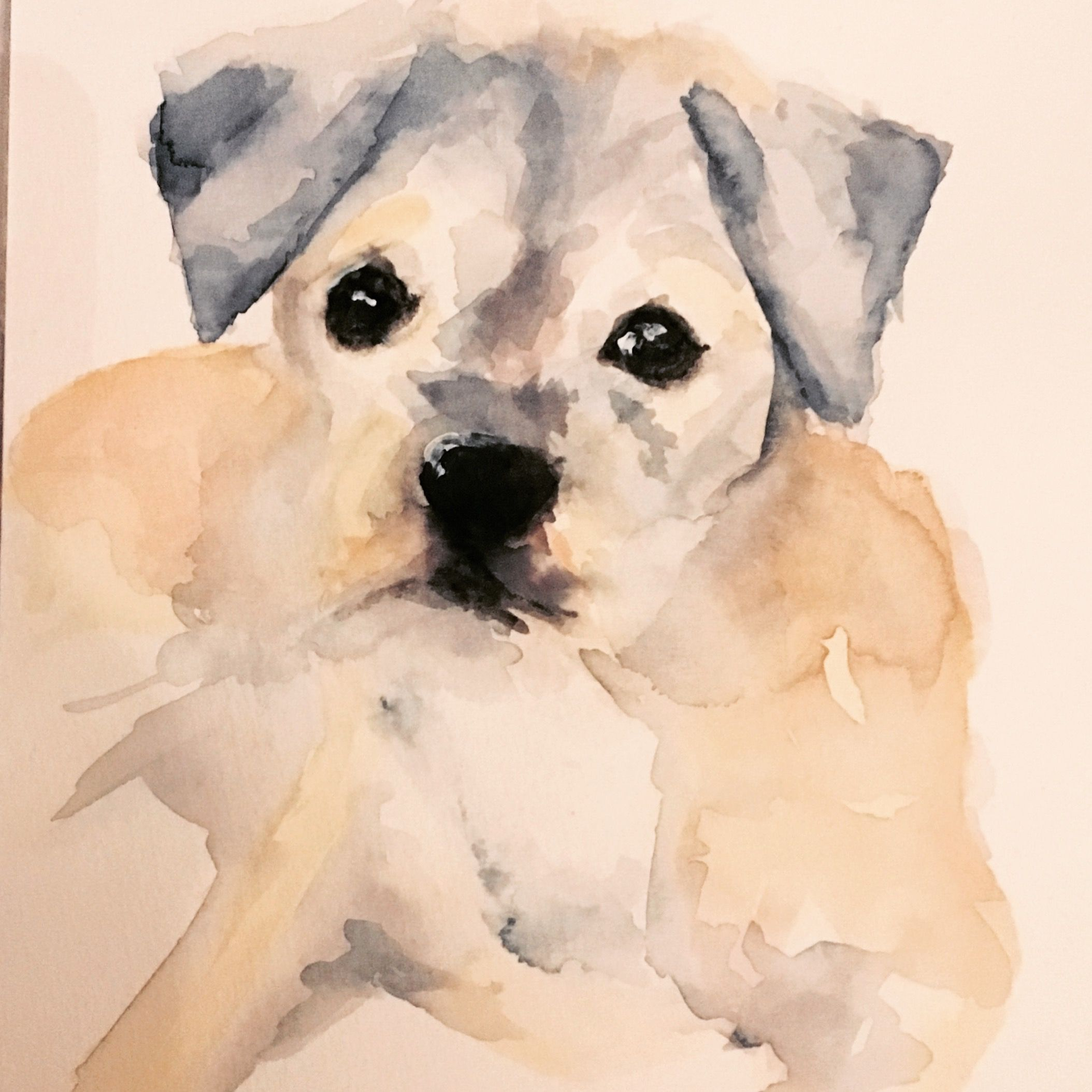 Pin By Gabriela Bogado On Watercolor Painting Dog Art