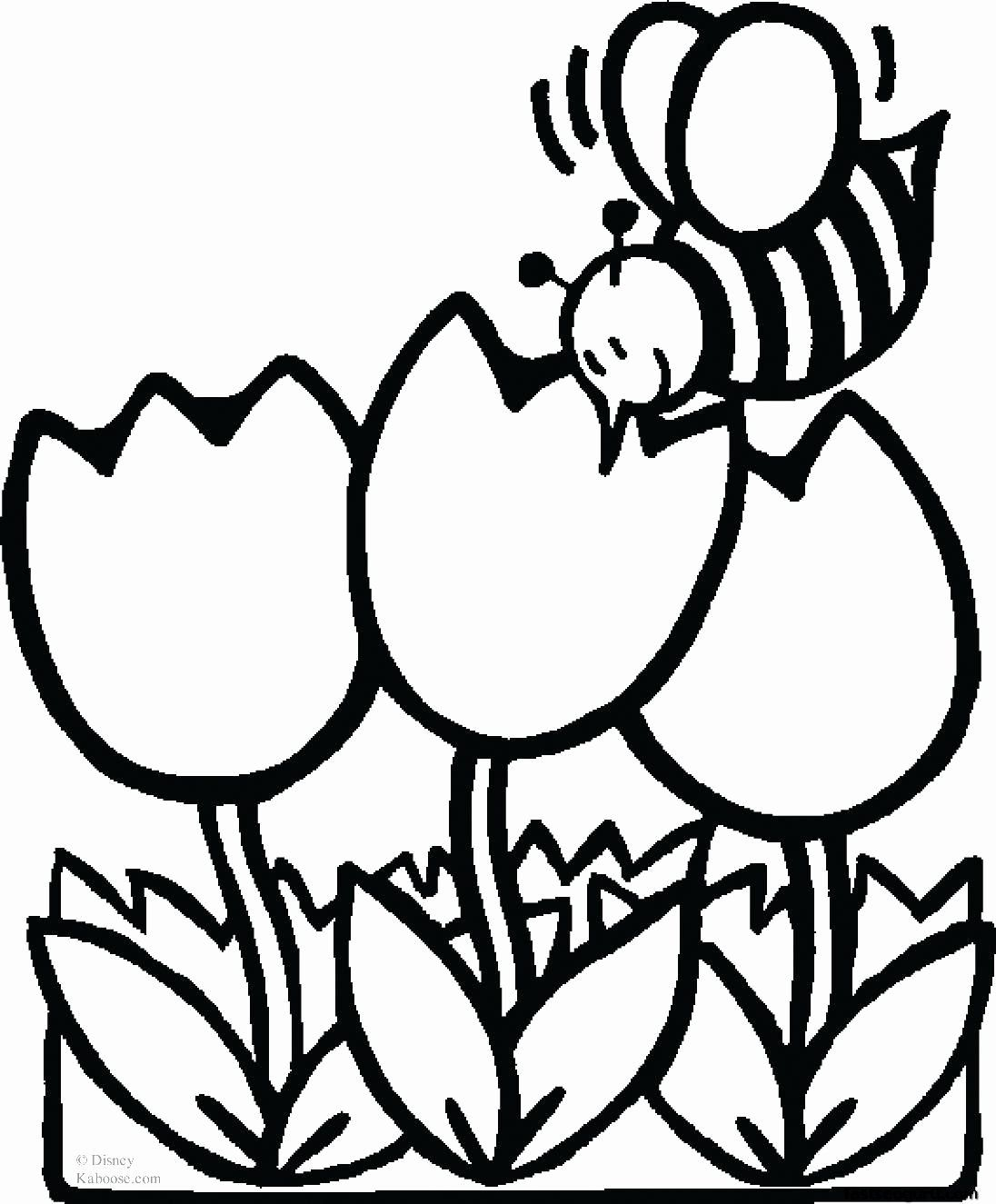 Printable Coloring Pages Flowers Fresh Flower Coloring Pages Spring Coloring Pages Bee Coloring Pages Flower Coloring Pages