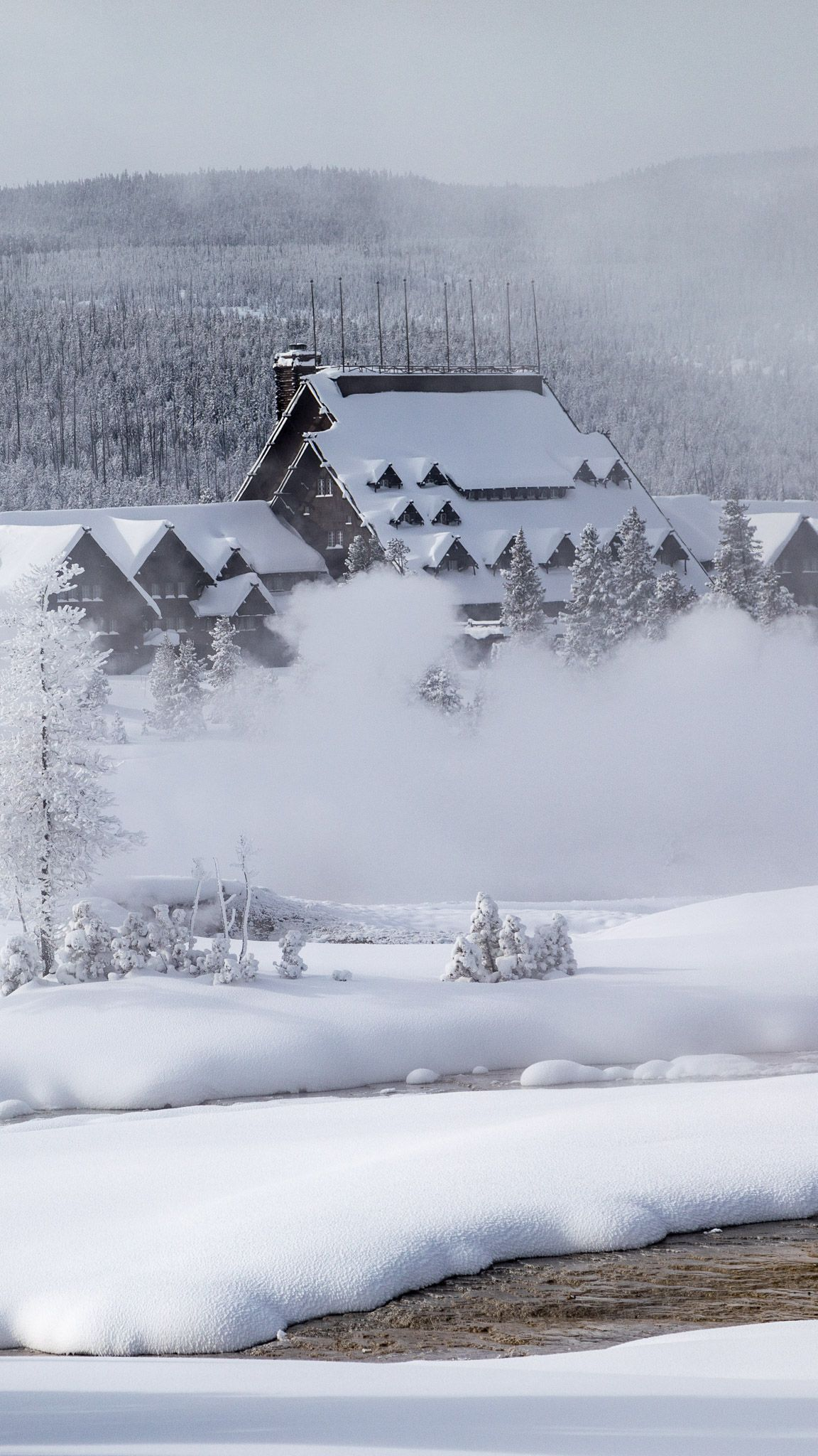 Join Us In Yellowstone This Coming Winter Wyoming