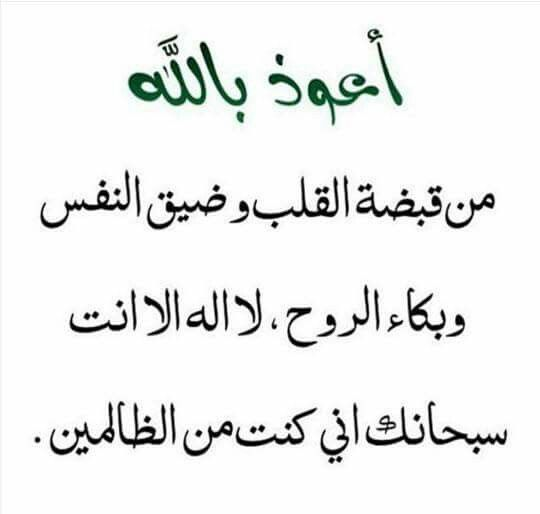 Pin by judi on pinterest inspire quotes islamic language inspring quotes inspirational quotes about speech and language inspiring quotes inspirational quotes inspiring words publicscrutiny Image collections