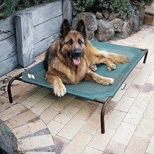 Coolaroo Weatherproof Elevated Dog Cot Elevated Dog Bed Dog