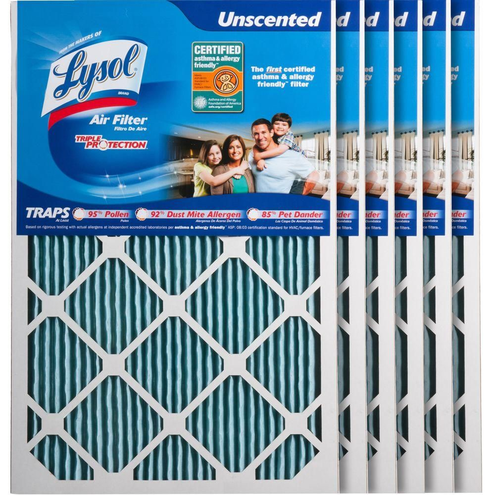 16 In X 24 In X 1 In Certified Asthma And Allergy Triple Protection Air Filter 6 Pack Air Filter