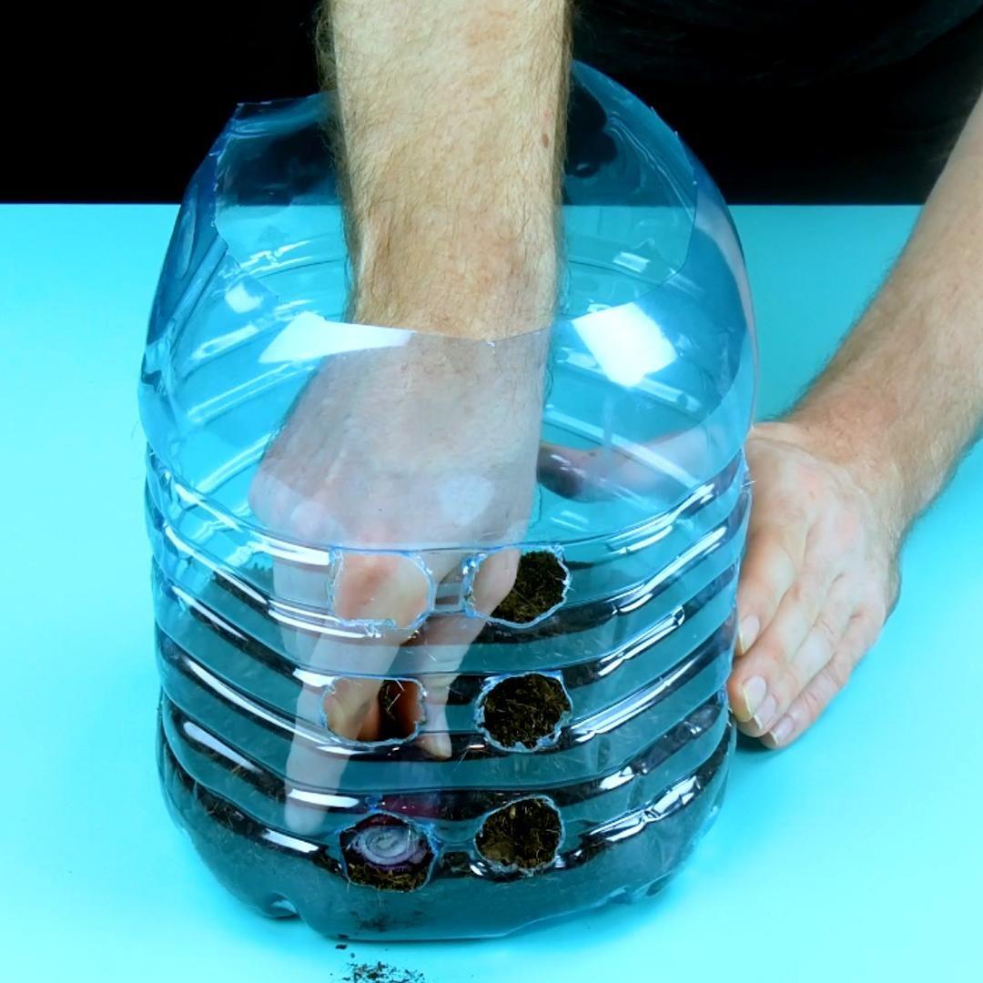 Photo of 4 Tricks mit PET-Flaschen, die Pflanzenfreunde lieben werden