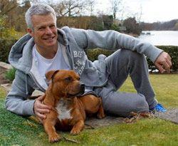 Save The Staffy Changing Public Perception Perception Dog Information Public