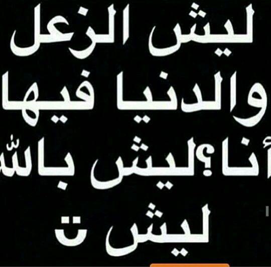 ليش كلولي ليش Funny Quotes