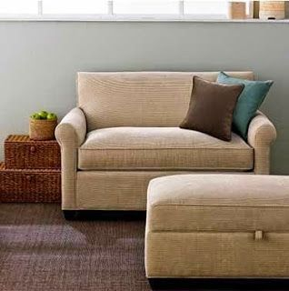 Crate And Barrel Oxford Sleeper Sofa Www Microfinanceindia Org