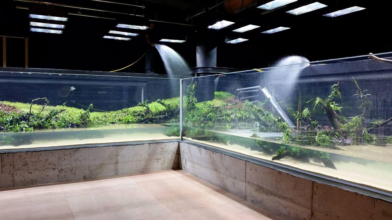 aquariums outreach team worked - 1280×720