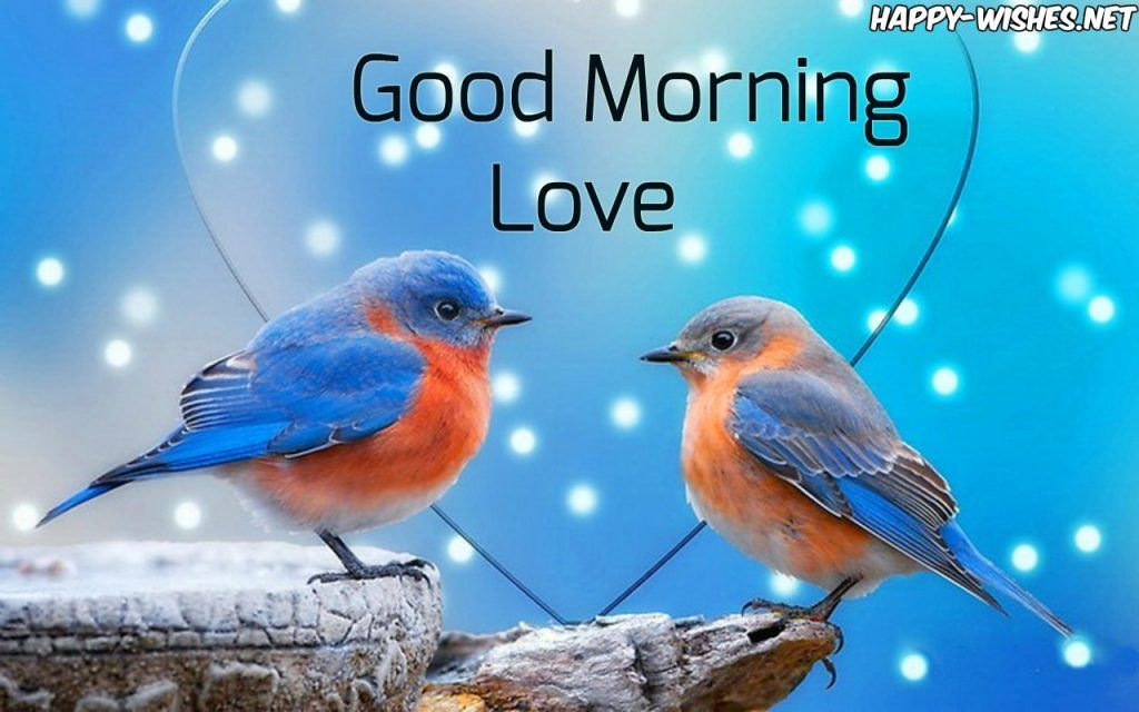 Good Morning Wishes With Love Birds Images Ggg Morning Wish