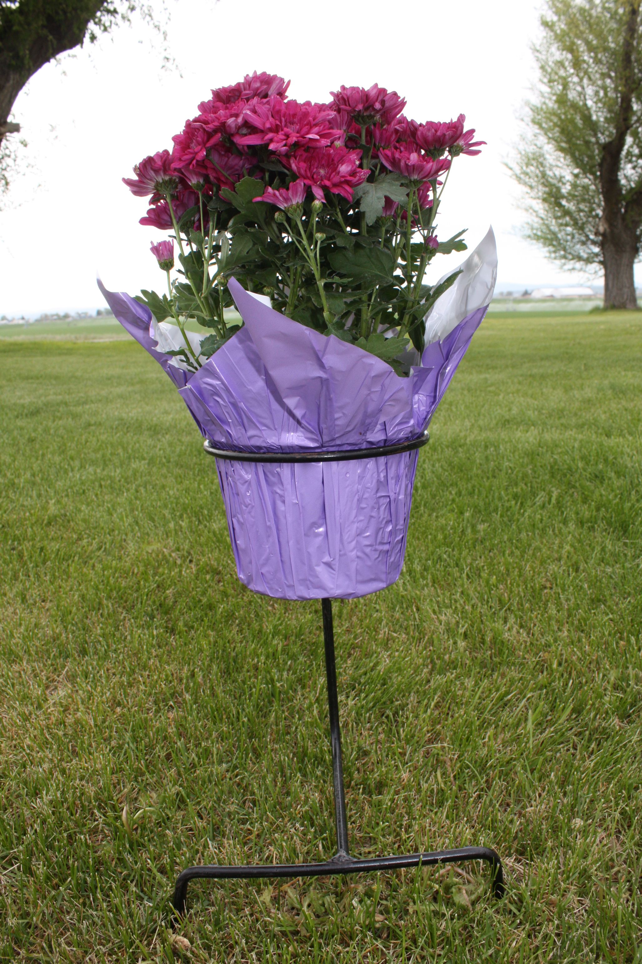 Rod Iron Flower Pot Holder Keeps Plant In Place At The