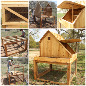 Chicken Coop, Run & Growing Planter - How to Build | The Homestead Survival