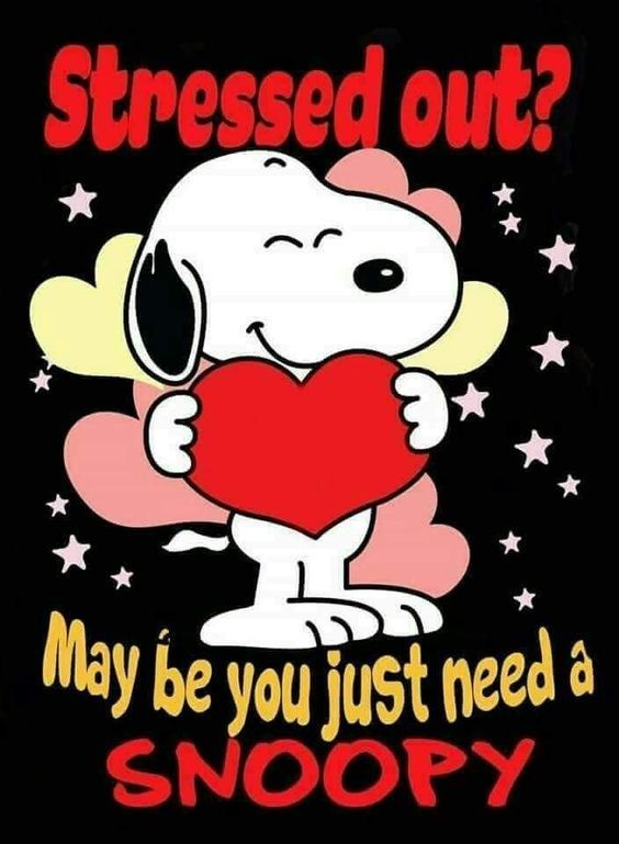 Stressed Out Maybe You Just Need A Snoopy Life Quotes Stress Quote Life Quotes And Sayings Snoopy Quotes Life Snoopy Snoopy Pictures Snoopy Love