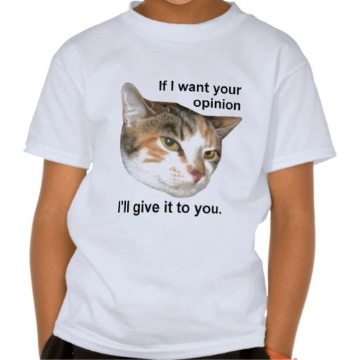 If I want your opinion... T Shirt!  #kitten #cat #kid #child #shirt #zazzle #store http://www.zazzle.com/conquestkitty*  Looks like kids shirts are the most popular thing in my Conquest Kitty store.  Kind of saw that one coming.  On a side note; No one has looked at my kitten dart boards, restoring my faith in humanity.
