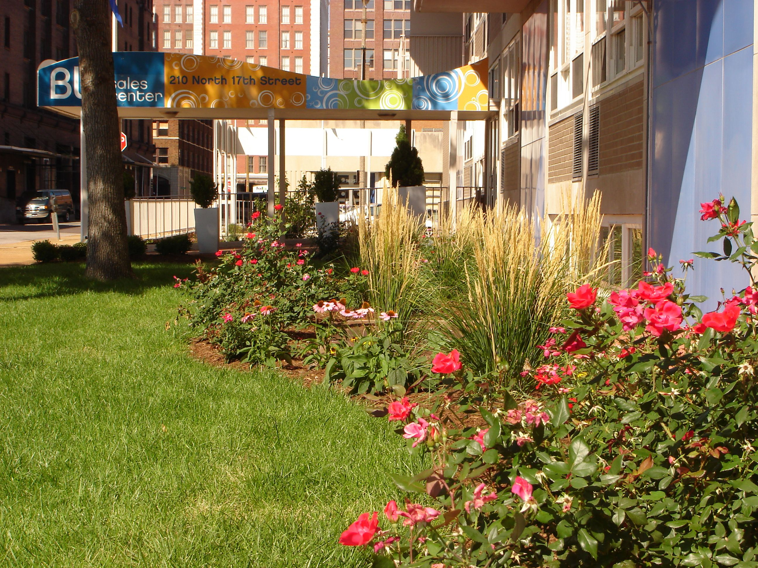Perennial border at blu city spaces in downtown st louis