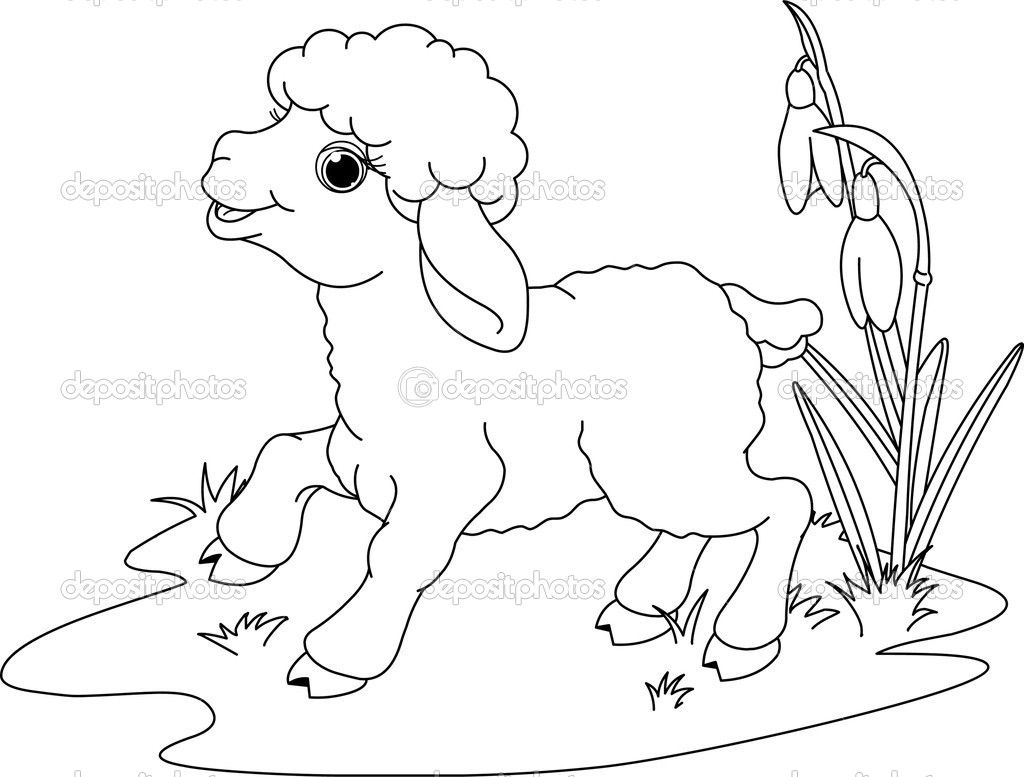 Free coloring page lamb