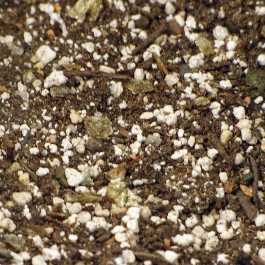 Topsoil Vs Potting Soil – Best Soil For Containers And Garden ...