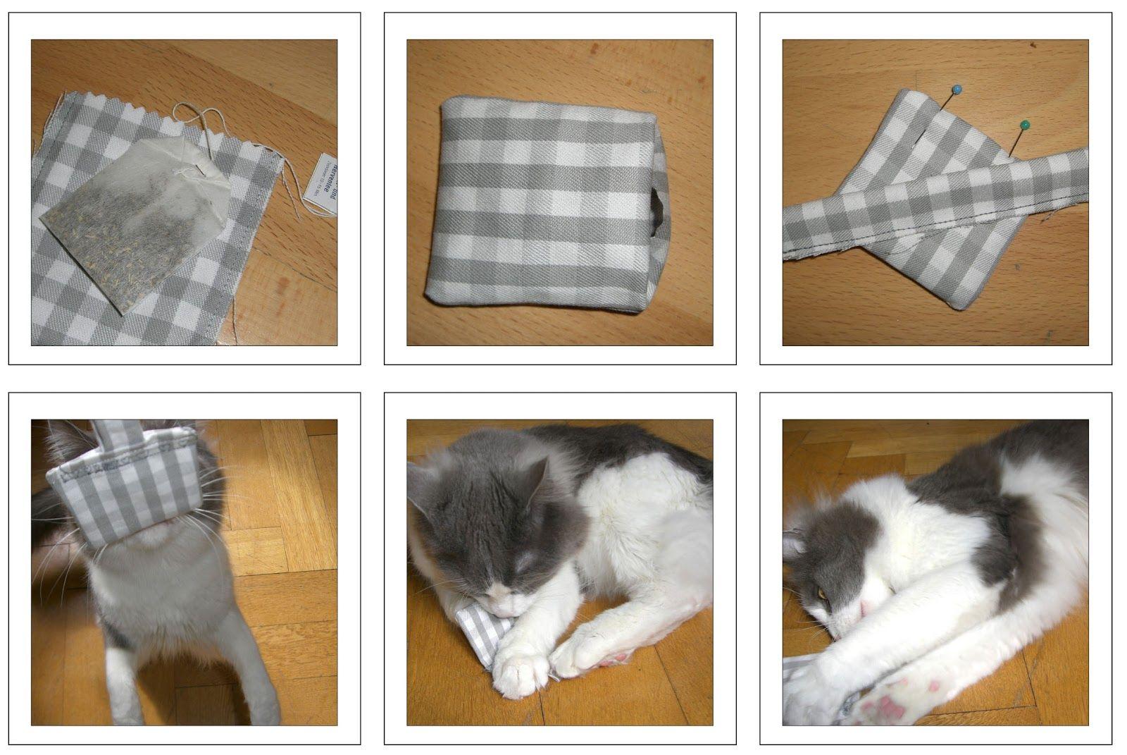 ännisews: Katzenspielzeug DIY  katze  Pinterest  Selber ...