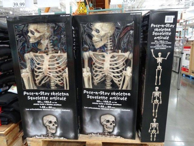 Pose N Stay Skeleton Costco 34 99 Halloween Halloween