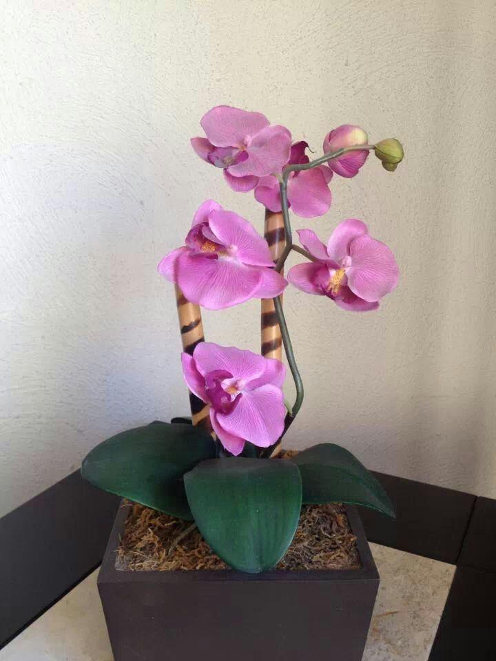 Las orqu deas representan elegancia y belleza coloca un for Orquideas artificiales
