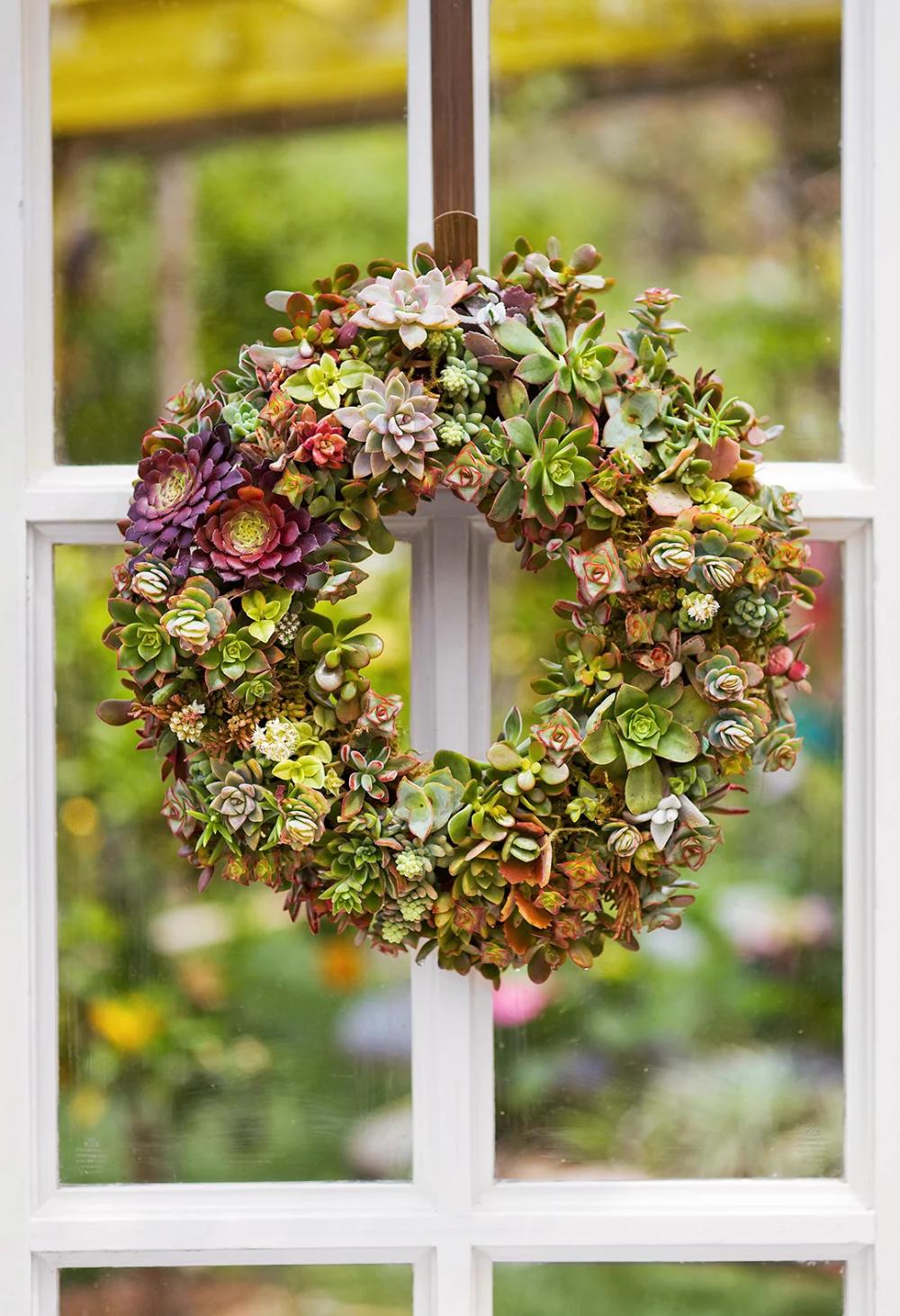 8 Stunning Vertical Succulent Garden Ideas Vertical