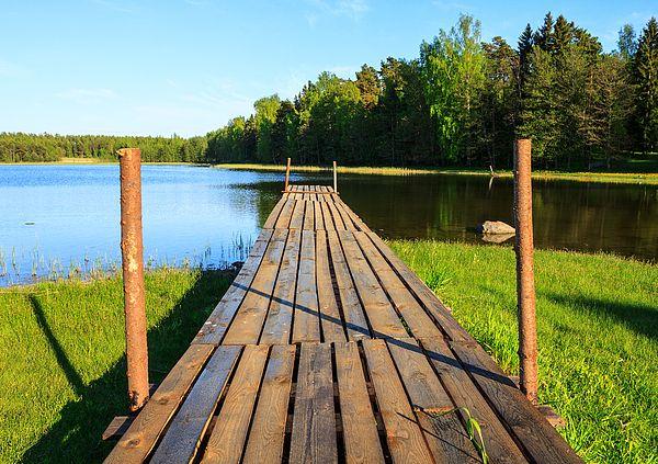alone beam beautiful bridge calm contrast europe fall finland forest green…