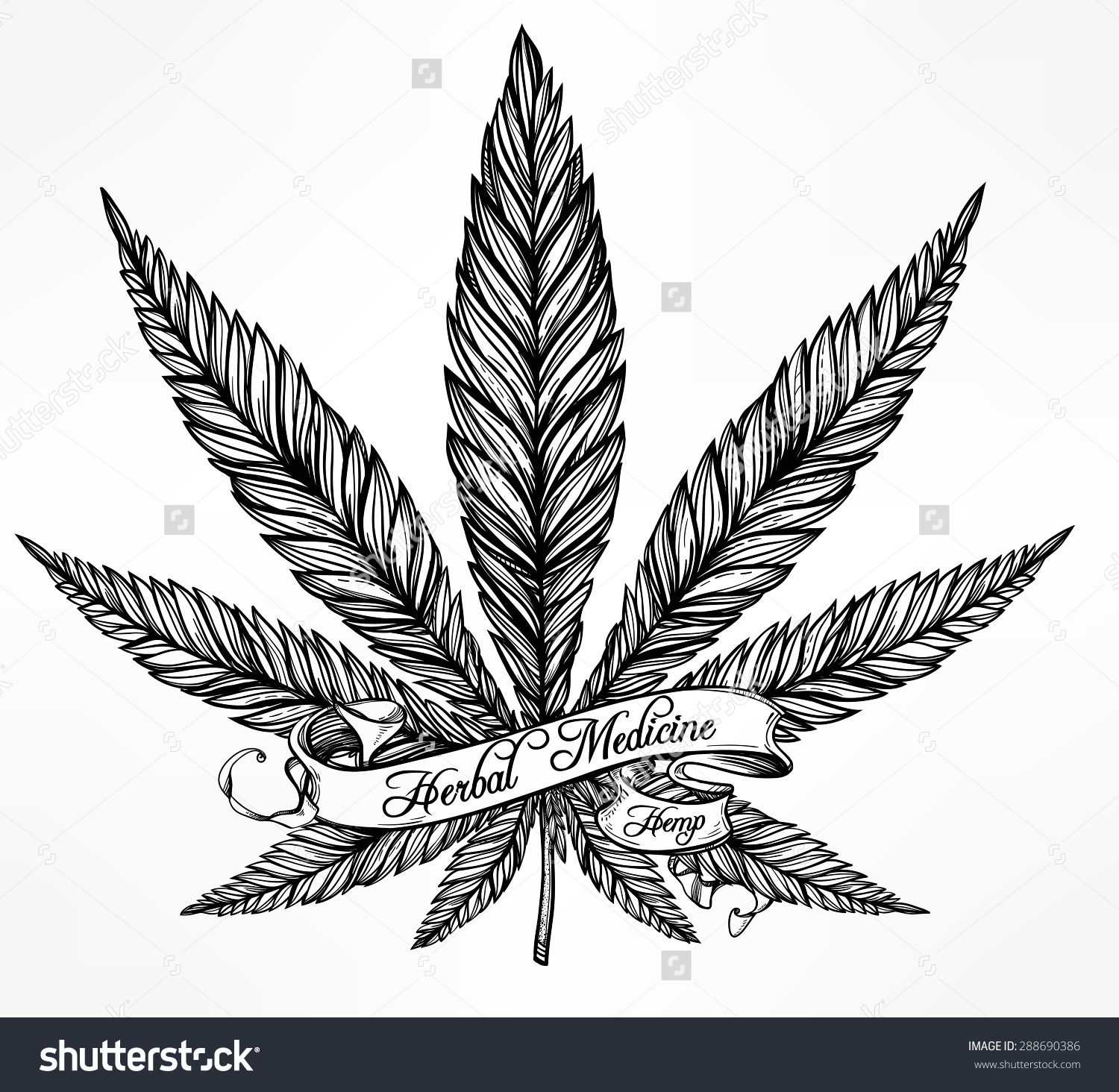 Stock vector hemp cannabis leaf in vintage linear style marijuana hemp cannabis leaf in vintage linear style buy this stock vector on shutterstock find other images biocorpaavc