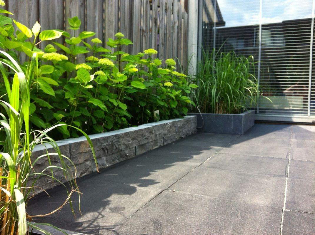 Tuinontwerp kleine tuin modern google zoeken house for Kleine tuinen voorbeelden