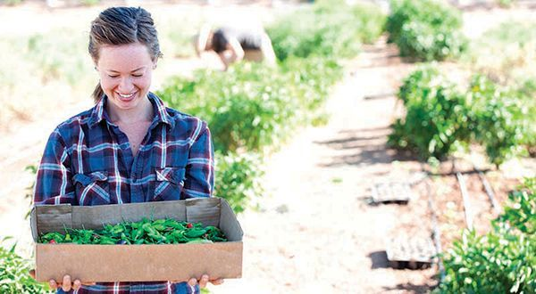 These farms embody the concept of agritourism as they encourage community involv These farms embody the concept of agritourism as they encourage community involvement thr...