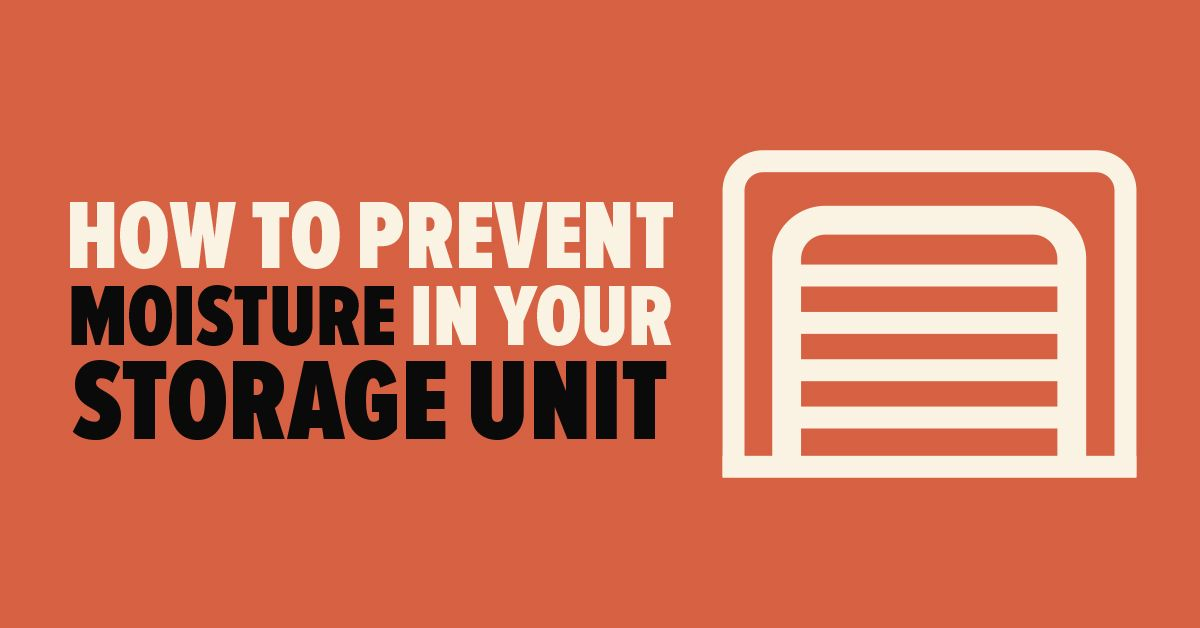 So verhindern Sie Feuchtigkeit in Ihrer Speichereinheit | Mold Busters