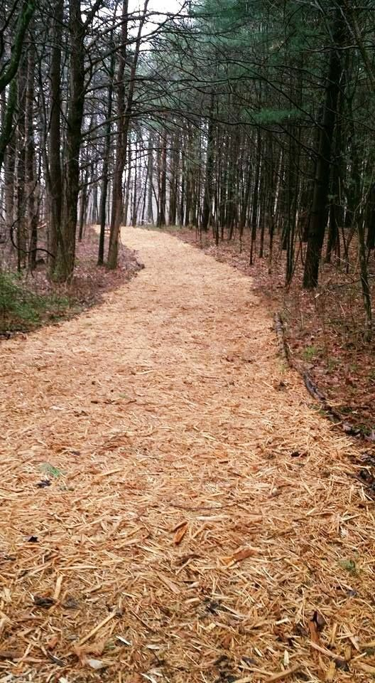 Natural Path using light colored wood chip mulch from ...