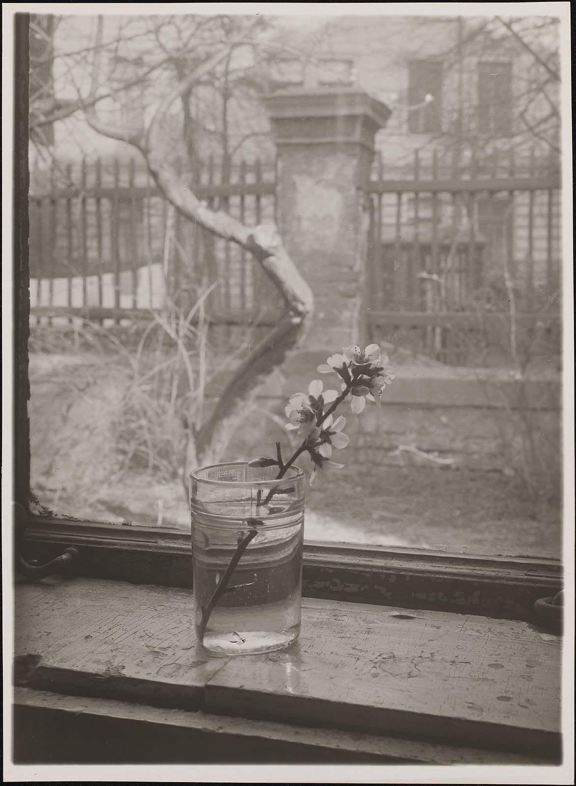 Josef sudek object photography alfred stieglitz great photographers commercial photography prague