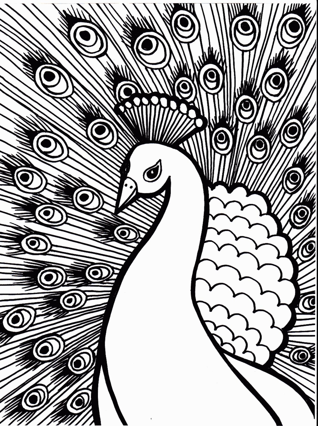 26 Coloring Pages Baby Birds | Coloring Pages | Pinterest | Bird ...