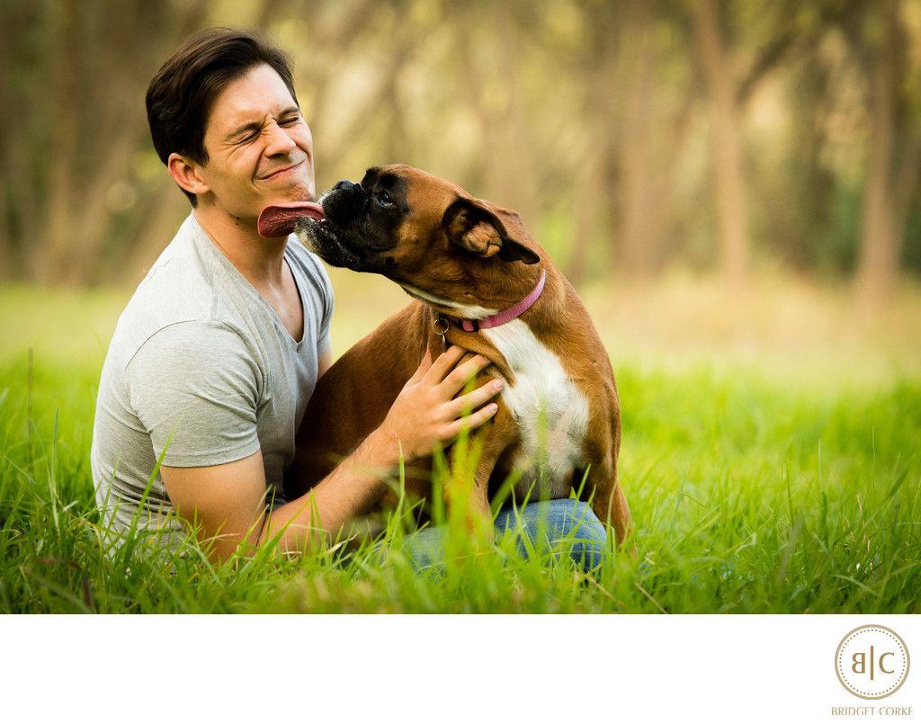 Bridget Corke Photography Boxer Location Dog Photographer