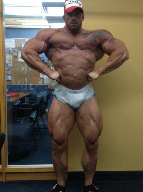 bodybuilder bodybuilding muscular muscles posing flex