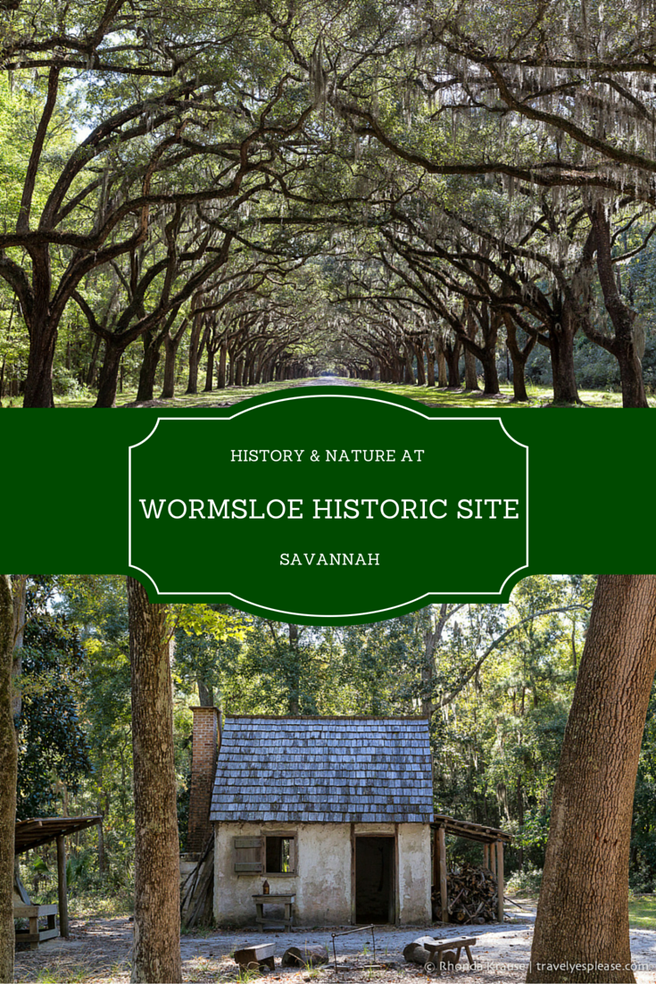 History nature at wormsloe for House tours in savannah ga