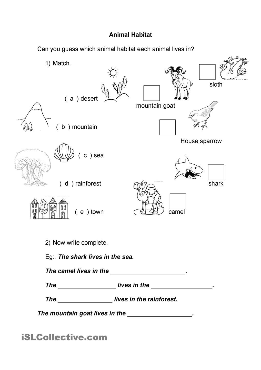 Worksheets Animal Habitats Worksheets animal habitat vertebrates and invertebrates pinterest habitats worksheets printable worksheets
