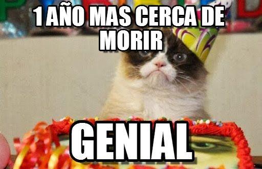 0ce45f97cf5c43766551bd1636096673 grumpy cat birthday meme ( www memegen es meme opnwjw