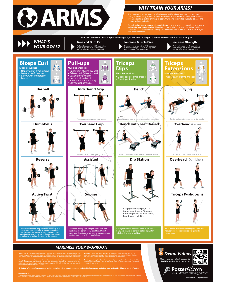 Weight Lifting Poster Bodybuilding Exercise Chart front Objective Arm Muscles