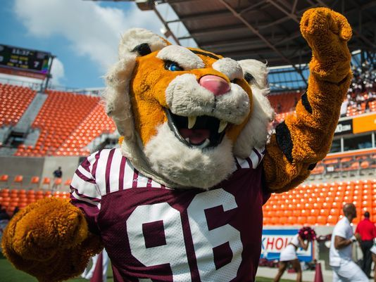 Texas Southern Tigers Mascot Tommy With Images Mascot